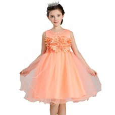 Girl's Floral Embroidered Dress
