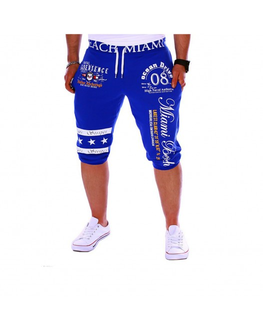 Men's Active / Basic Sports Weekend Loose / wfh Sweatpants / Shorts Pants - Letter Print Blue